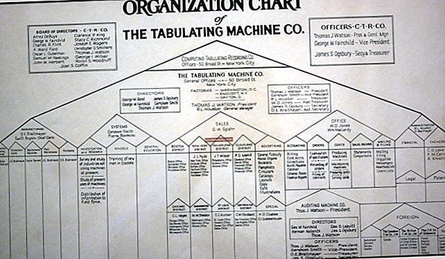 Quali sono i vantaggi di una normale struttura organizzativa dell'autorità di linea?