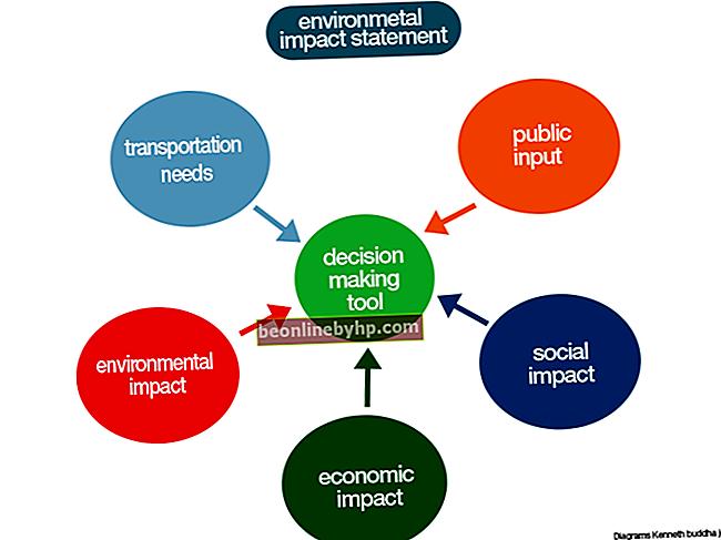 Che cos'è una dichiarazione di impatto?